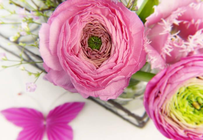 bc0a0cff8e305d Cięte kwiaty - jak dbać o cięte kwiaty?